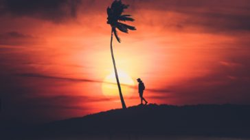Man Walk Sunset Silhouette 4k Background for Desktop