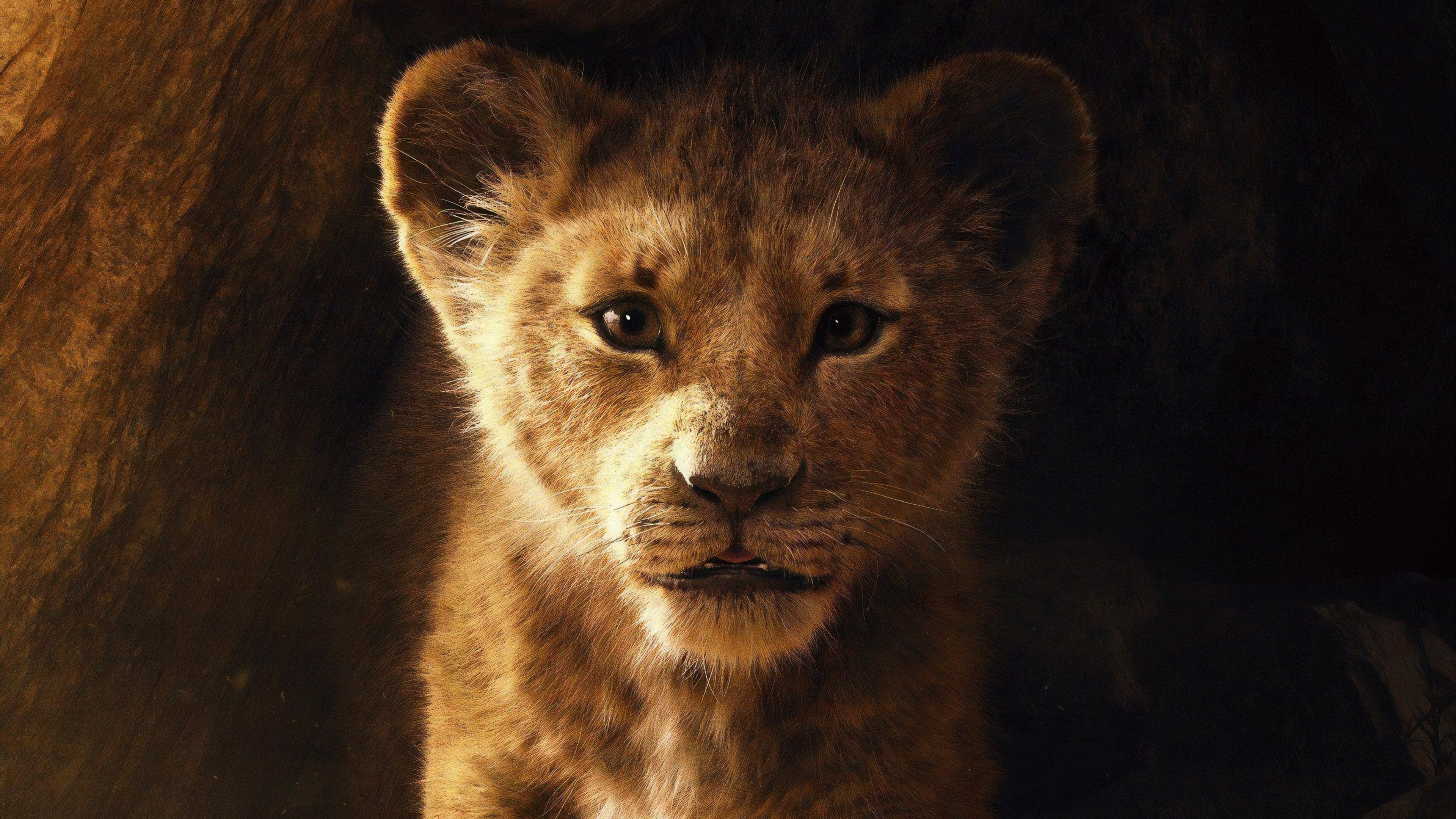 The Lion King 2019 Movie 4k Wallpaper 3840x2160