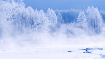 Winter Scenery Photo Desktop HD Wallpaper 4K