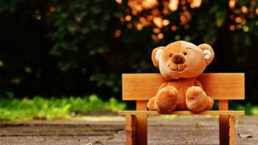 Cute Teddy Bear in Park Bench HD Wallpaper 4K
