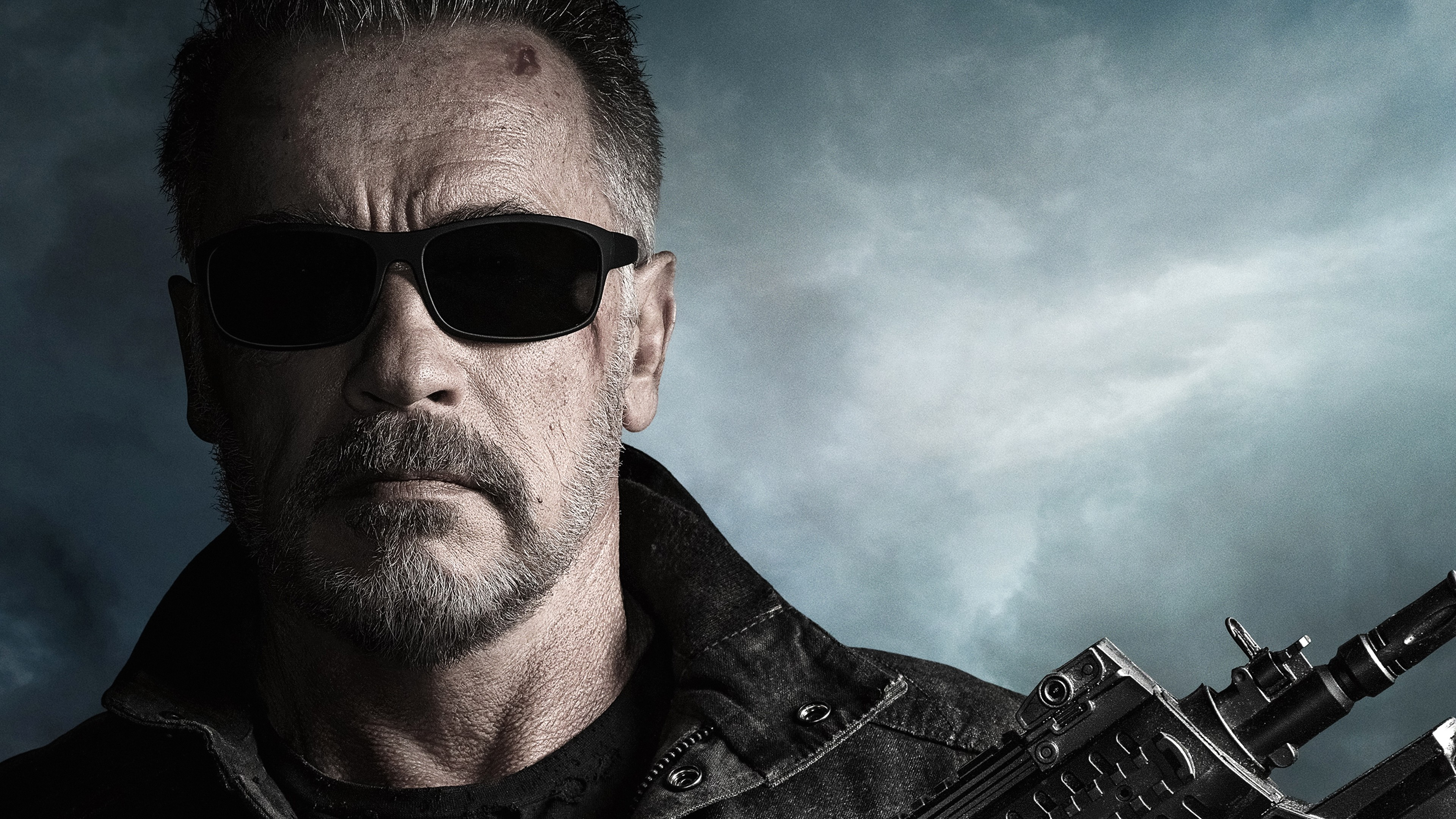 Terminator: Dark Fate Movie Photo Arnold Schwarzenegger Wallpaper 4K