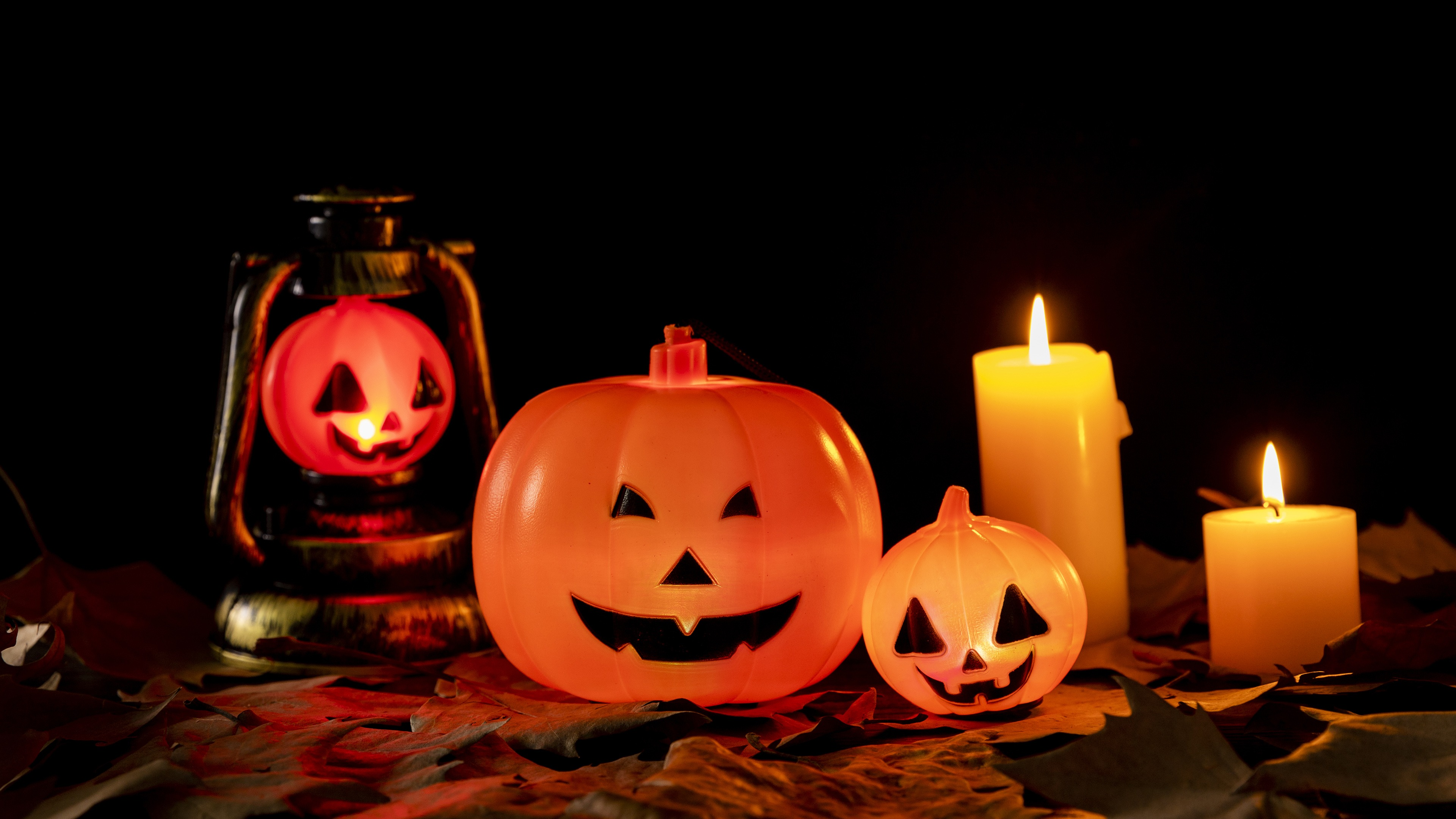 Halloween Pumpkin Lantern Photo HD Background 4K